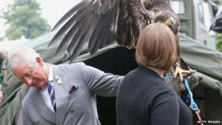 The Prince of Wales and Zephyr the eagle at the Sandringham Flower Show 2013