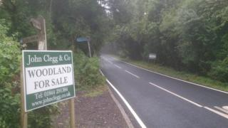 For sale sign next to woodland