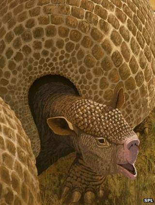 Artist's impression of giant armadillo-like creature (Image: Science Photo Library)