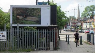 Sir John Everett Millais - Ophelia on Edge Lane