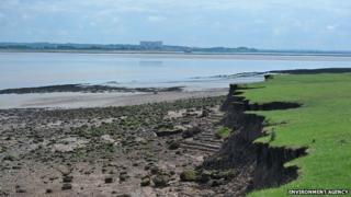 Saltmarsh creation project at Lydney by Environment Agency and Natural England