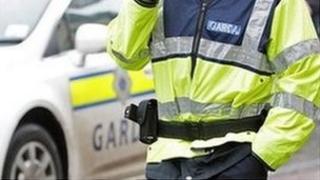 Garda and vehicle