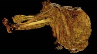 World's oldest bog body hints at violent past