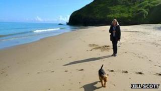 Dog being walked along a beach