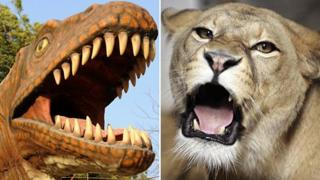 Composite image of a dinosaur and a lion