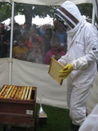 Beekeeper at 2013 Taunton Flower Show