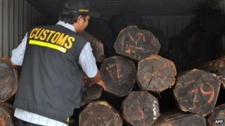Jakarta port inspector examines illegal logs - 20 Sep 11