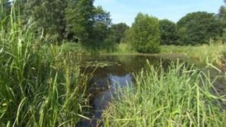 Montgomery canal, Shropshire
