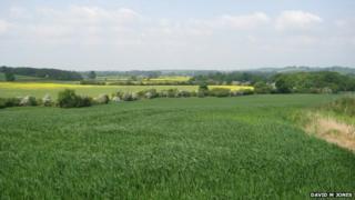 Danesmoor (site of Battle of Edgcote_)