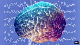 Brain and brainwaves