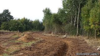 Blackwater River Restoration Project