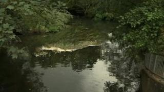 Weir on River Ivel
