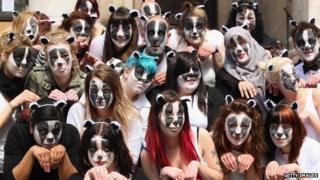badger protestors