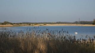 Marton Mere Local Nature Reserve