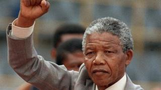 Nelson Mandela addresses a crowd a few weeks after his release from prison in 1990.