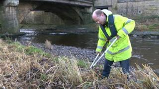 Volunteer on banks of River Calder