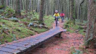 Mountain Bike trail