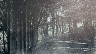 Copheap, Wiltshire 1916