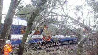 A train under a tree