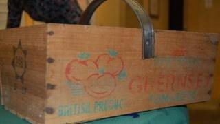 Guernsey tomato crate from the 50s
