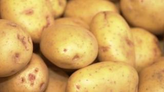 potatoes (generic)