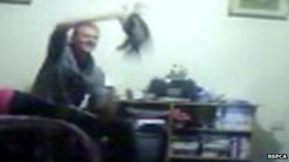 Matthew Coffin dangling cat