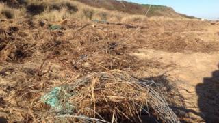 Scratby beach clear-up