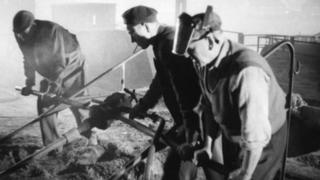 Steelworkers in 1950s