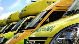 East of England Ambulance Service vehicles