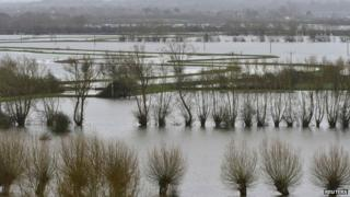 Flooded Somerset Levels, Jan 2014