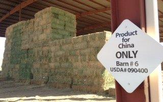 Piles of hay behind 'Product for China only' sign