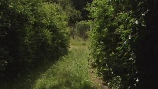 Ballyedmond land