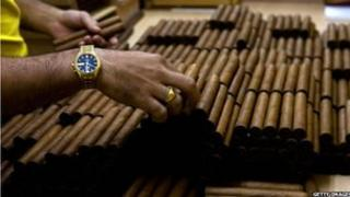 Man's hands with Cuban cigars