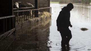 A farmer working at his flooded farm