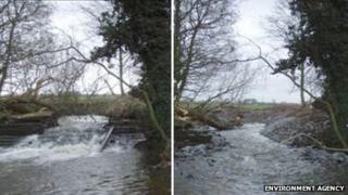 Gayton Mill Weir