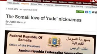 BBC News feature