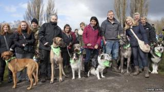 Some of the dog walkers