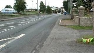 Mr Quinn was knocked down on the Gortgonis Road in Coalisland