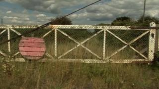 Disused gate at overgrown rail crossing