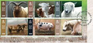 Isle of Man rare breeds