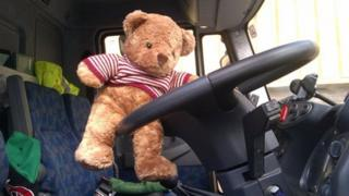 Teddy bear driving a lorry