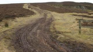 Damage caused on the Llantysilio mountain
