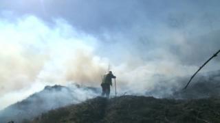 A fireman fighting a grass fire