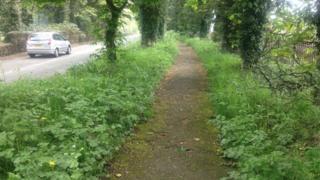 A footpath in Wrexham