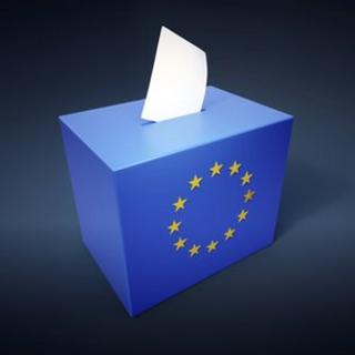 European parliamentary elections abstract