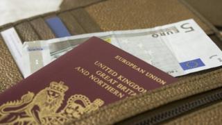 Passport and euro note