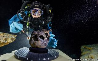 Diver examines the skull underwater