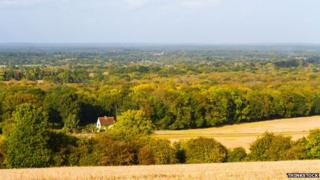 Hogs Back, Surrey