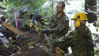 Workers harvesting timber in Canada at the site of where the aircraft was found