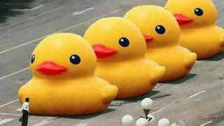 The famous Tiananmen Square image with the tanks replaced by ducks
